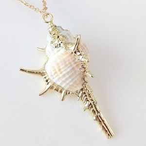 ONLY ONE! Natural seashell necklace